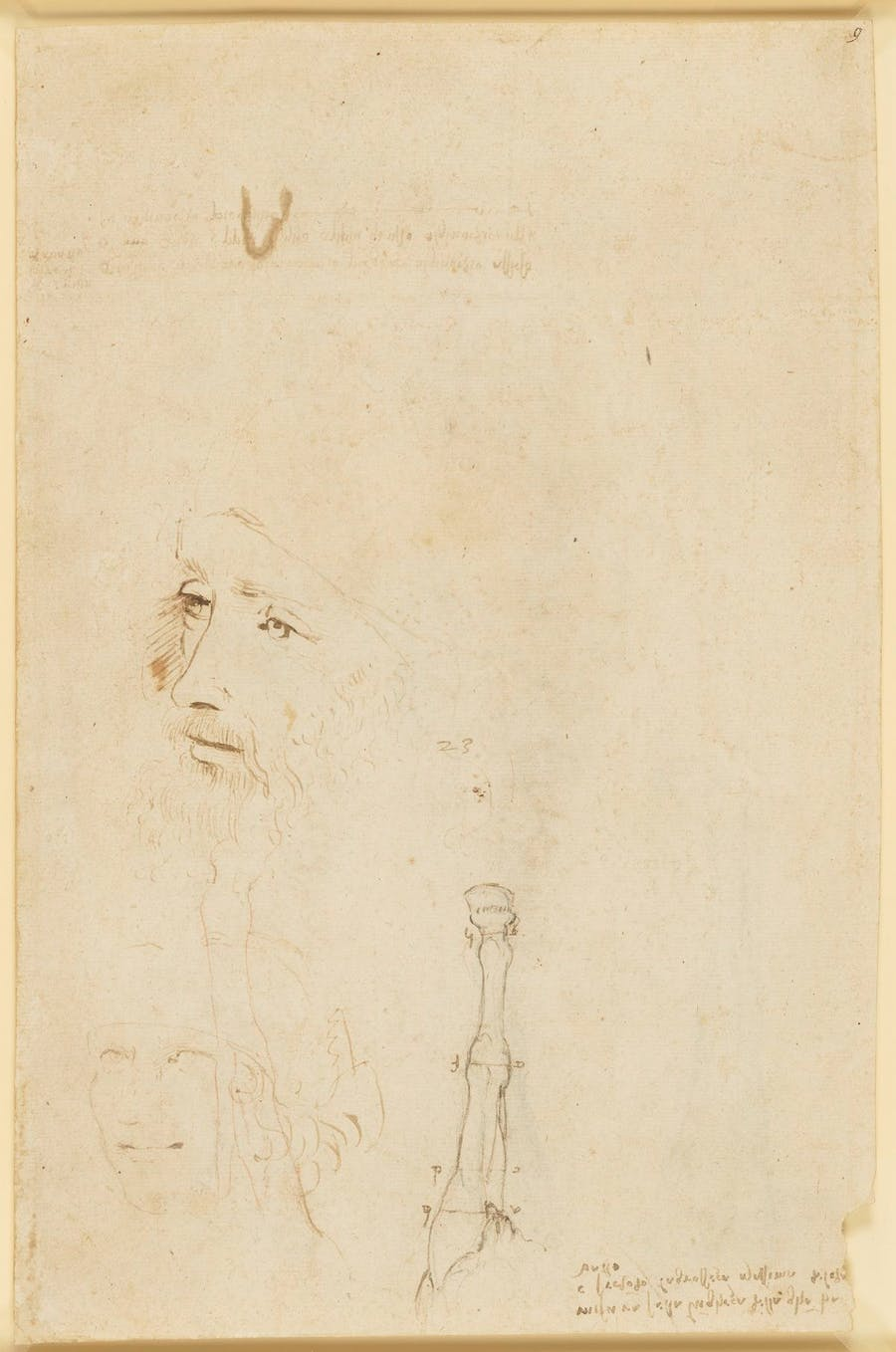 Esquisse, portrait de Léonard de Vinci et une patte de cheval, ca. 1517–18, image Royal Collection Trust : © Her Majesty Queen Elizabeth II 2019