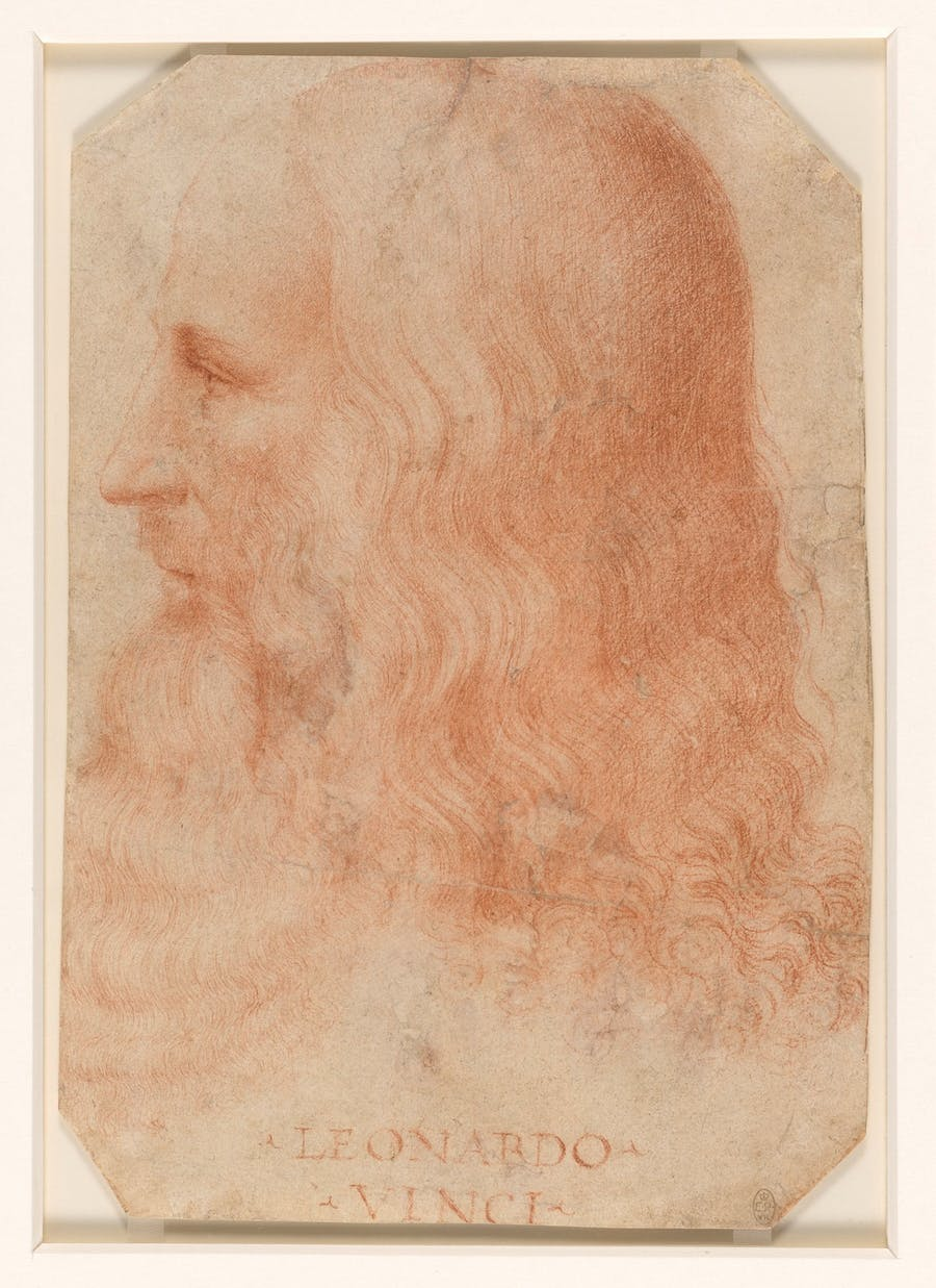 FRANCESCO MELZI. Retrato de Leonardo da Vinci (c. 1515-18). Imagen vía: Royal Collection Trust