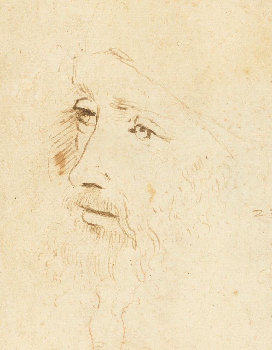 Detalle del posible retrato de Leonardo da Vinci de la Royal Collection. Imagen vía: BBC