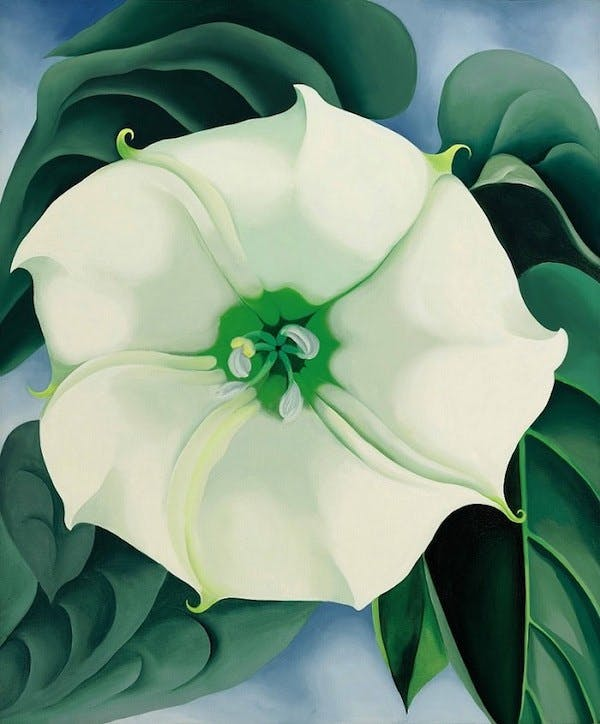 Georgia O'Keffee, « Jimson Weed/White Flower No.1 », image ©Sotheby's