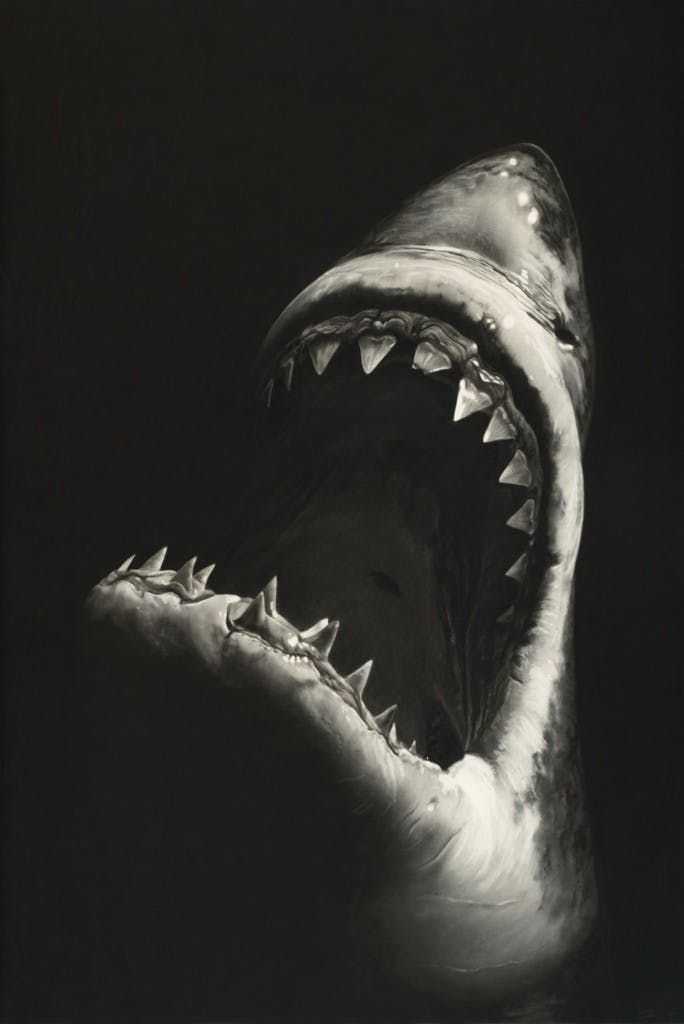 ROBERT LONGO (Brooklyn / New York 1953) - Untitled (Shark 7), 228,6 x 152,4 cm, monogrammé et daté 2008 Estimation: 400.000 EUR