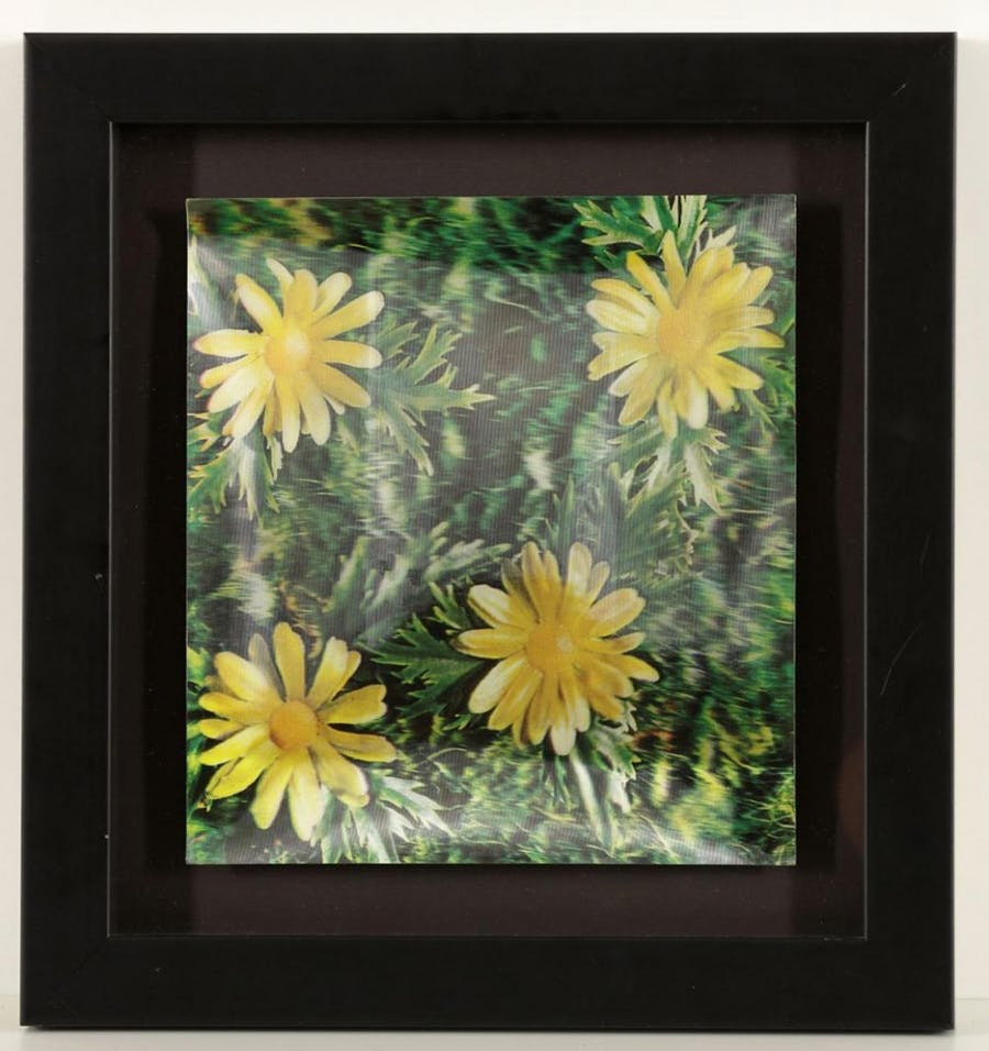 ANDY WARHOL (1928 Pittsburgh - 1987 New York City) - Daisies, Dreidimensionale Farbfotografie, Stempel