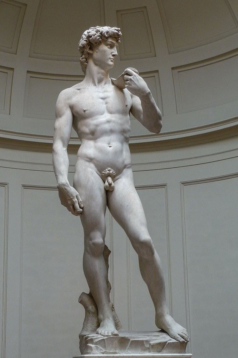 Michelangelo Buonarroti (1475-1564), David, 1501-04 | Photo: Jörg Bittner Unna via Wikimedia