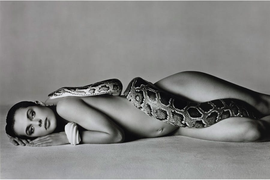 RICHARD AVEDON - Nastassia Kinski and the Serpent, Los Angeles, California, 1981, 52/200, signiert|Abb: Sotheby's